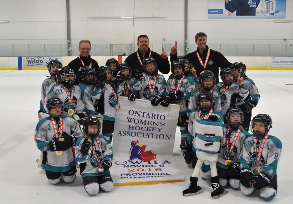 2015_16_Novice_B_-_Gold_-_OWHA_Provincial_Championships.JPG